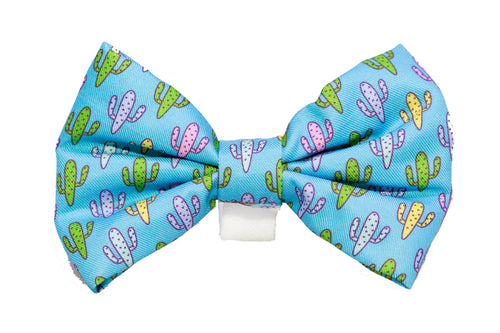 Pastel Cactus Bow Tie - Small & Large