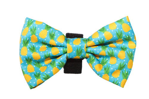 Pineapple Bow Tie - Small & Large