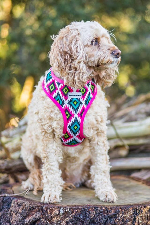 Pink Geometric Dog Harness