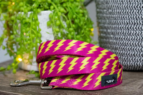 Pink & Yellow Bolt Dog Leash (Neoprene)