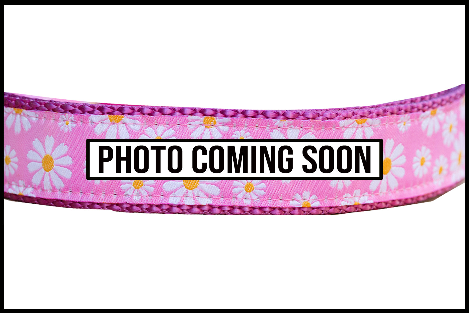 Pink Daisy Dog Lead (Nylon)-Dizzy Dog Collars