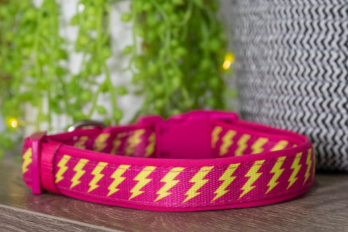 Pink & Yellow Bolt Dog Collar (With Neoprene Padding)