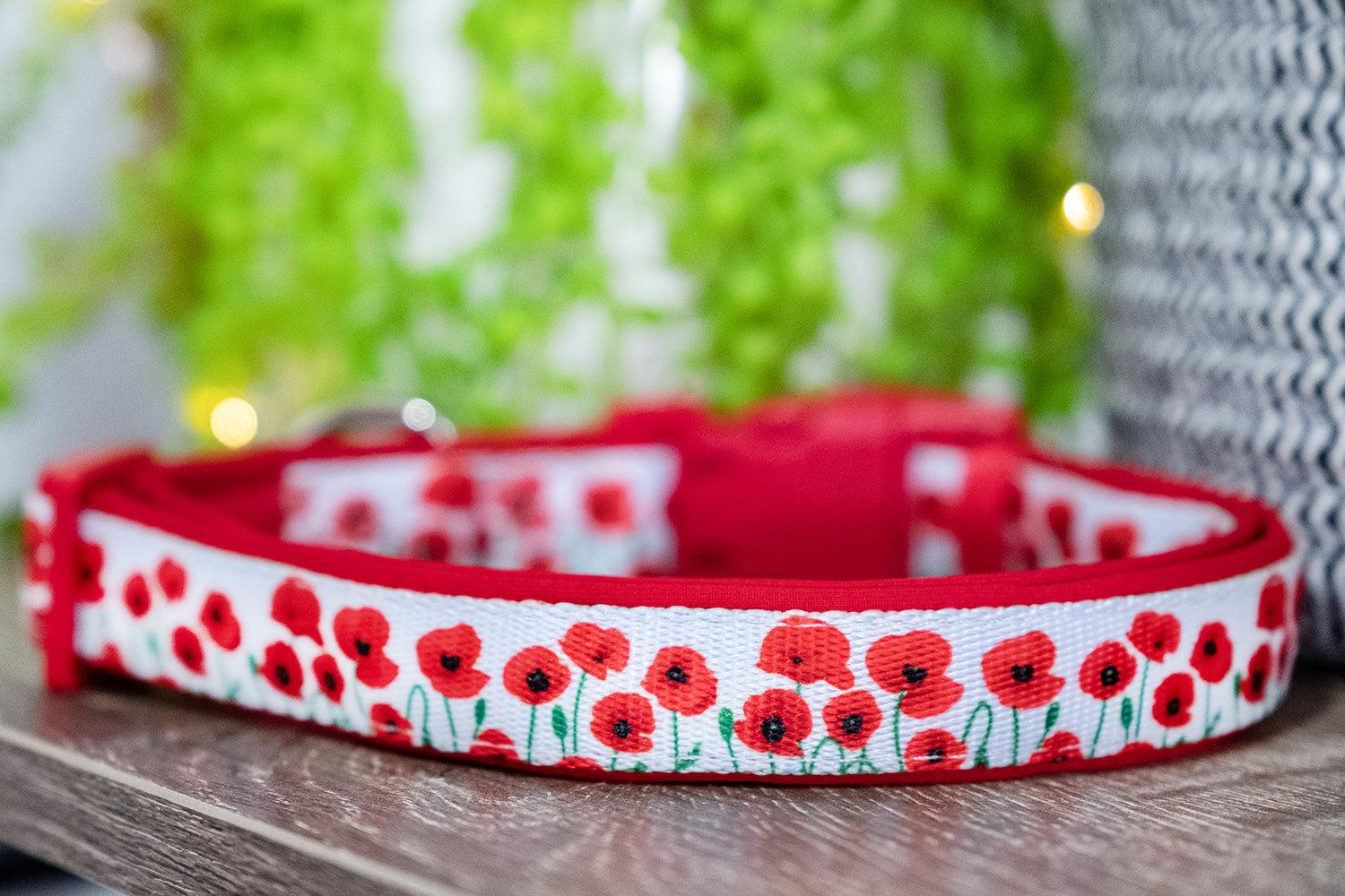 Poppies Dog Collar (Neoprene)-Dizzy Dog Collars-Dizzy Dog Collars