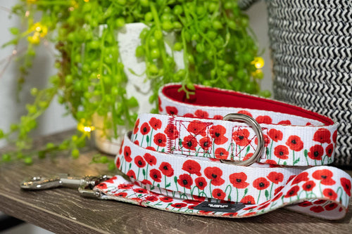 Poppies Dog Leash (Premade)