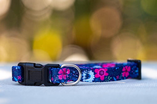Navy Floral Cat Collar / Toy Breed Dog Collar / Puppy Collar