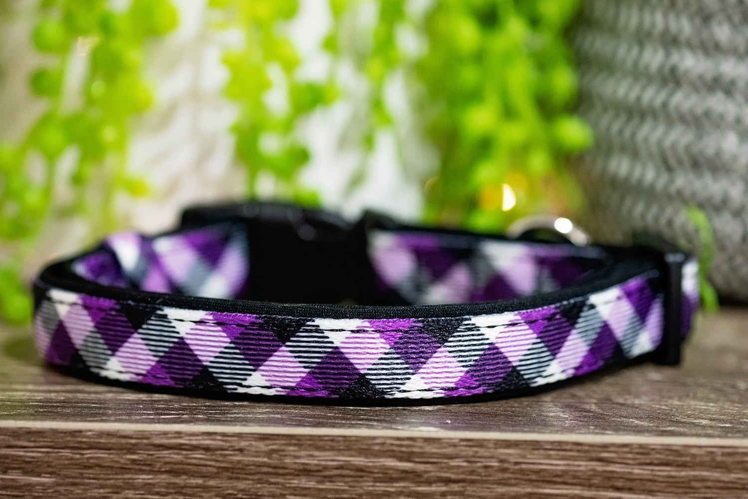 Purple Plaid Dog Collar (Neoprene) SHIPS AUGUST 26th-Dizzy Dog Collars-Dizzy Dog Collars
