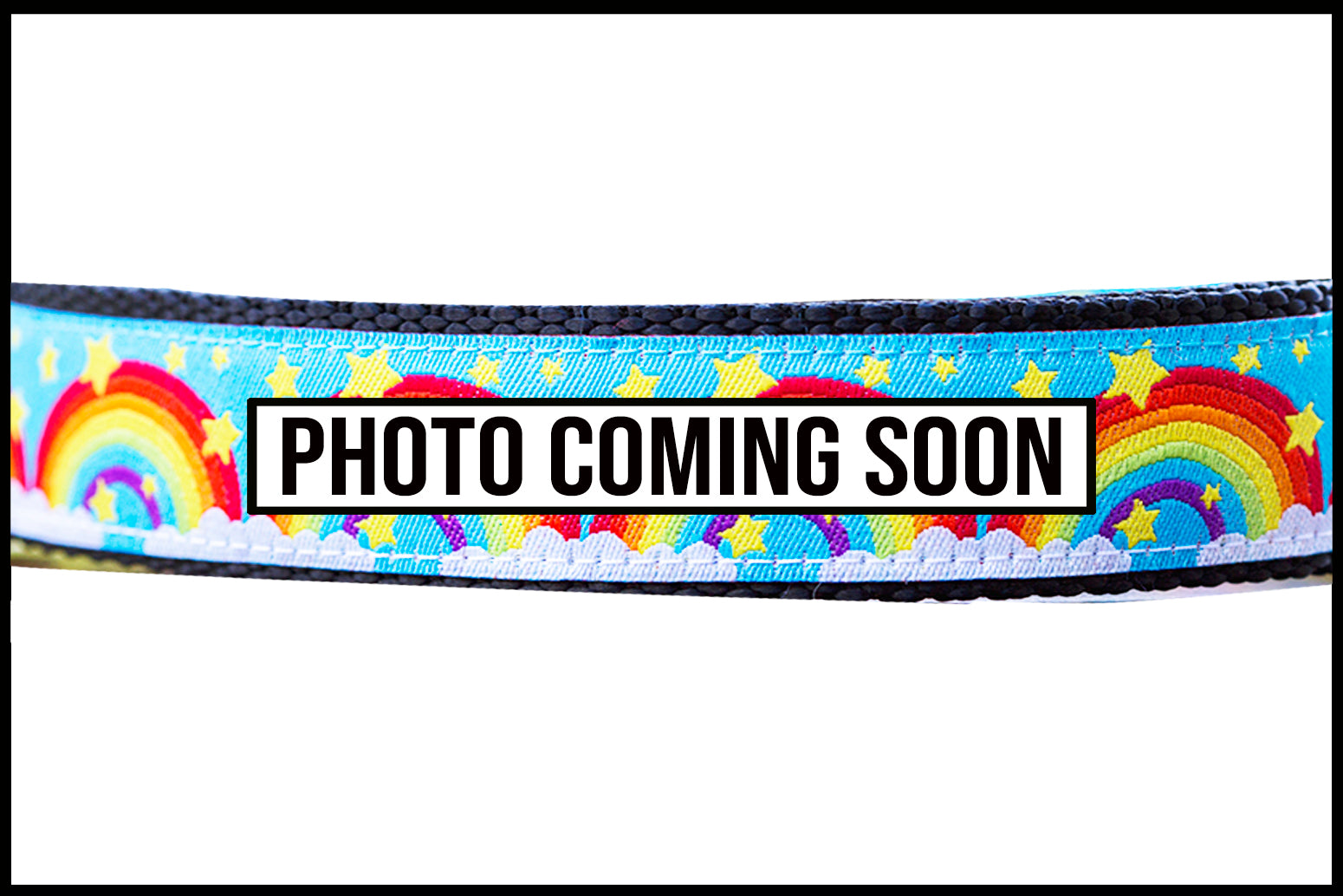 Rainbows Dog Leash-Dizzy Dog Collars