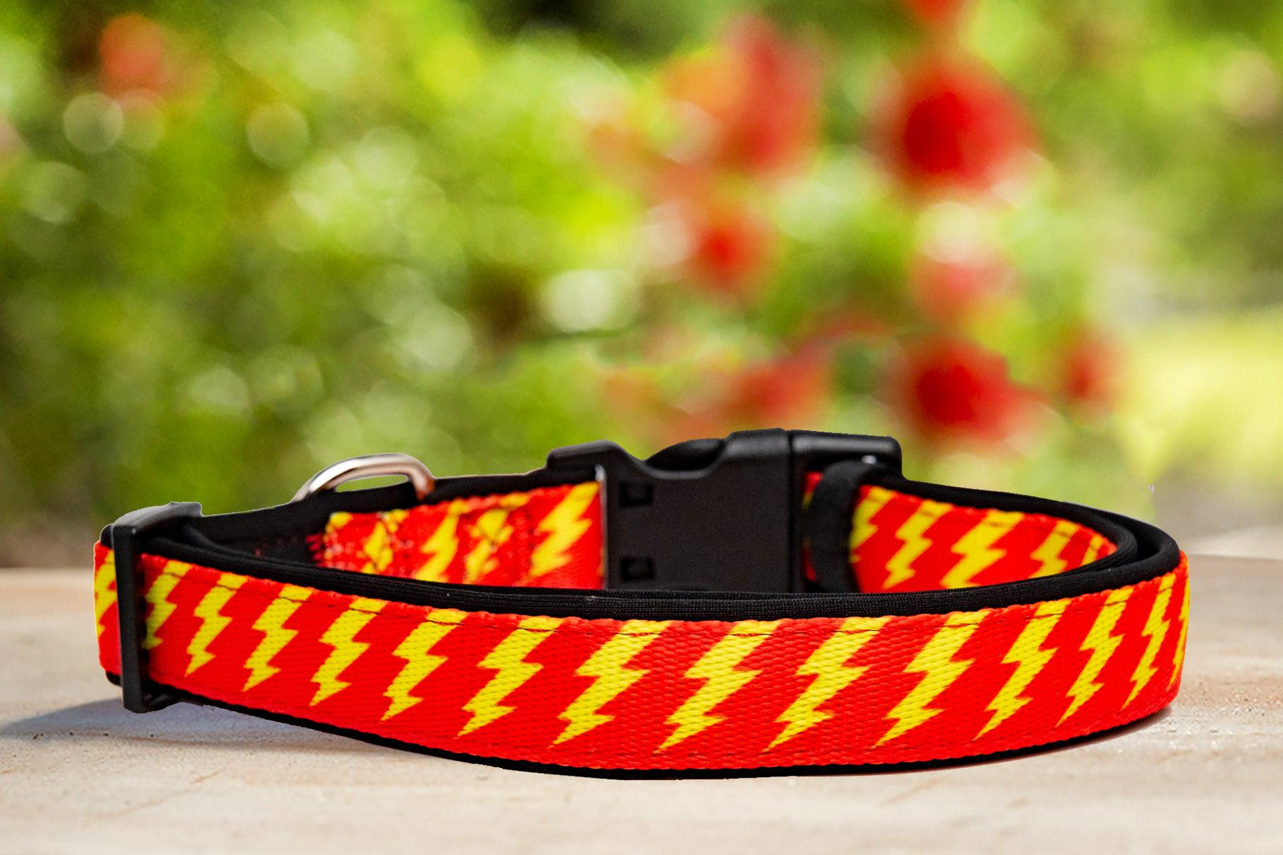 Red & Yellow Bolt Dog Collar (Neoprene)-Dizzy Dog Collars-Dizzy Dog Collars