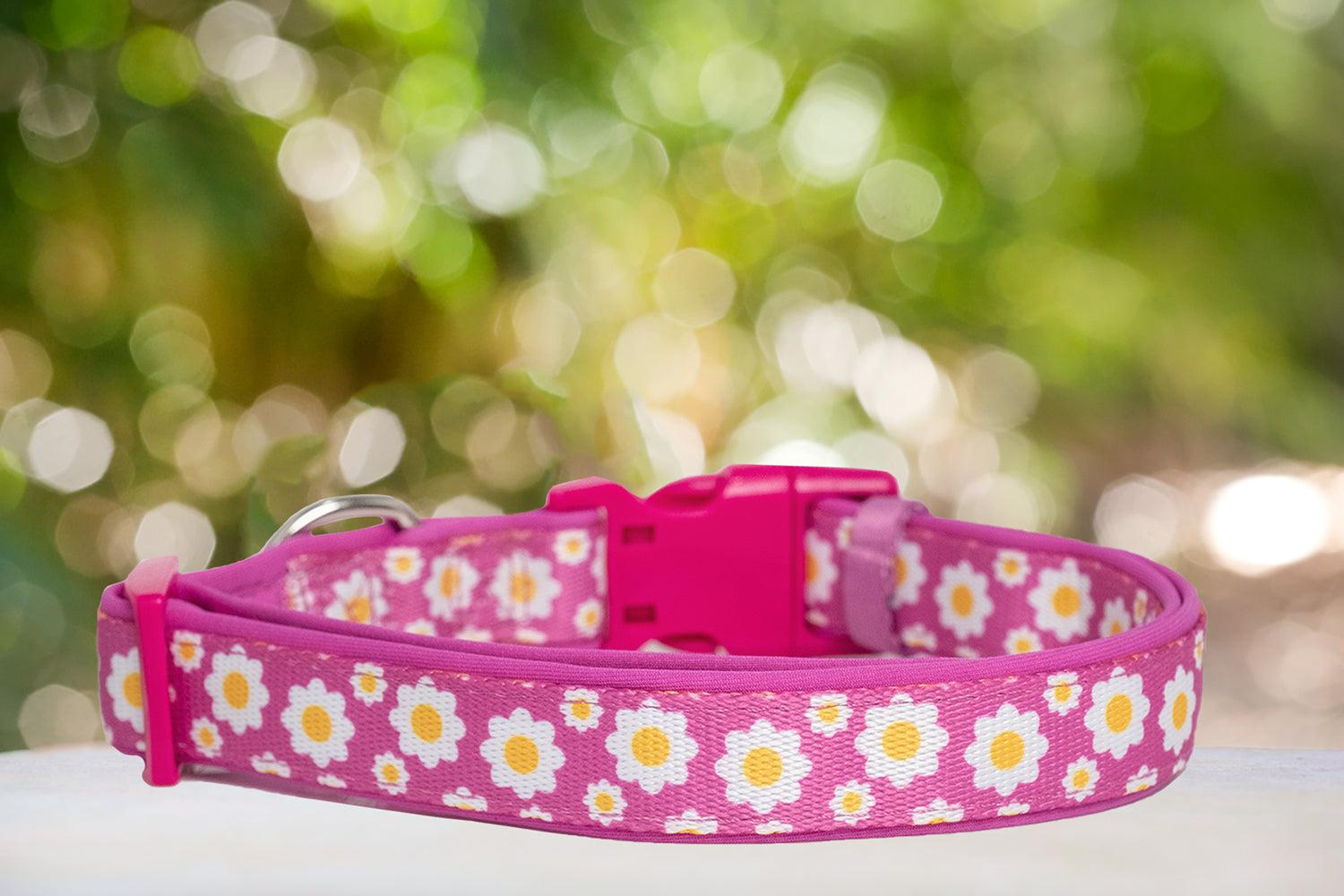 Retro Pink Daisy Dog Collar (Neoprene)-Dizzy Dog Collars-Dizzy Dog Collars