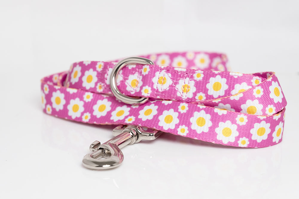 Retro Daisies Dog Leash (Neoprene)-Dizzy Dog Collars-Dizzy Dog Collars