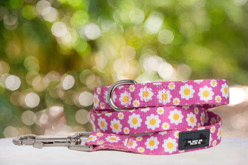 Retro Pink Daisy, Daisies Dog Leash