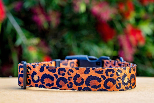 "Safari - Leopard Print Dog Collar (Made to order in 2 days) ""Value Range"""