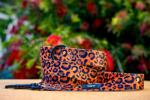 Safari - Leopard Print Dog Leash (Pre-made)