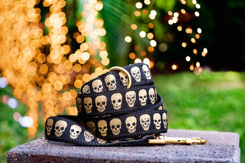 Gold Skulls Dog Leash / dias de los muertos Dog Lead (Handmade to order)