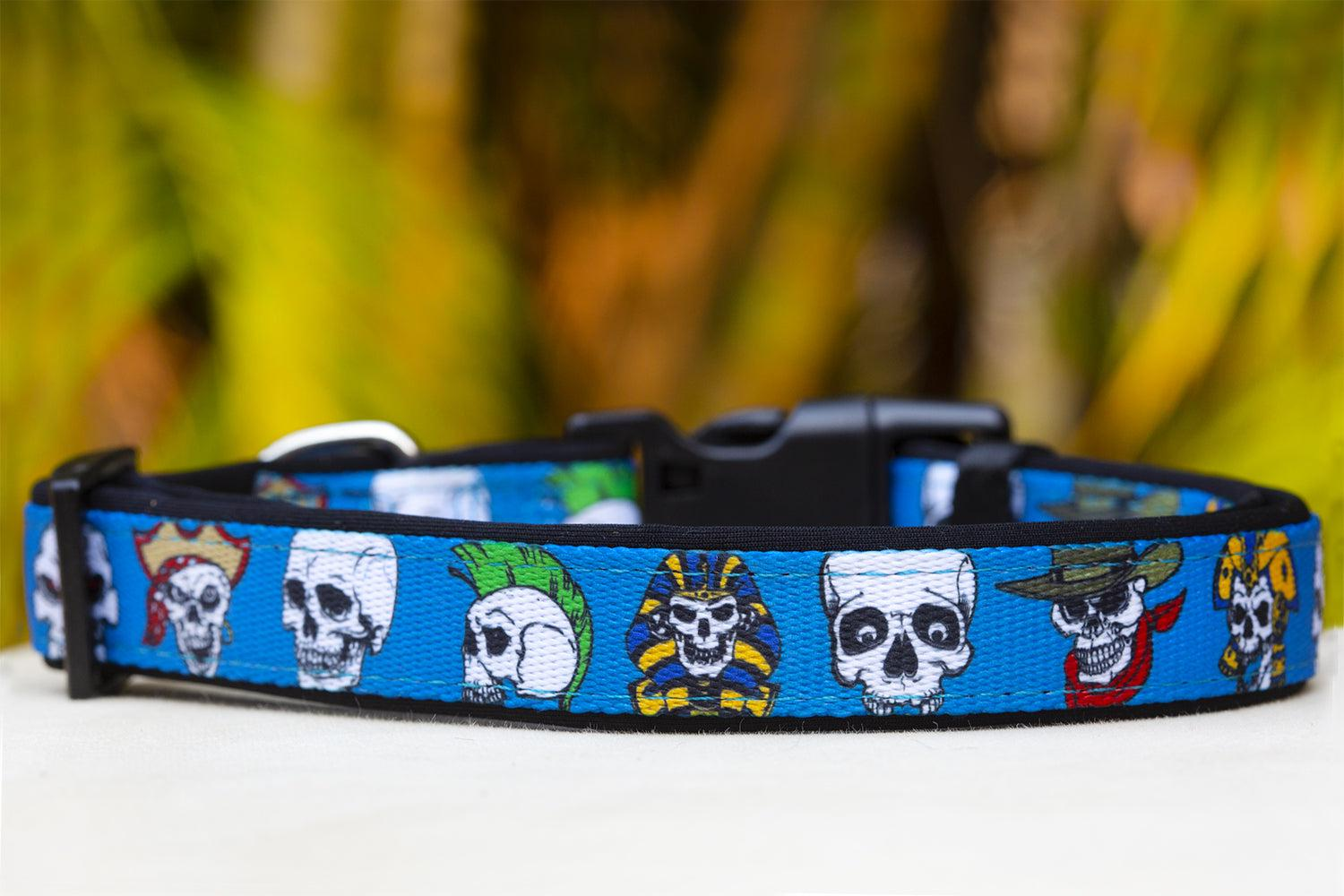 Blue Skulls Dog Collar (Premade)-Dog Collar-Dizzy Dog Collars