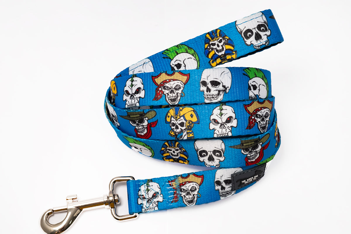 Blue Skulls Dog Leash (Premade)-Dizzy Dog Collars
