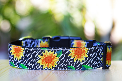 Sunflower Dog Collar (3.8cm -  Extra Wide) Buckle or Martingale  (Handmade to order)
