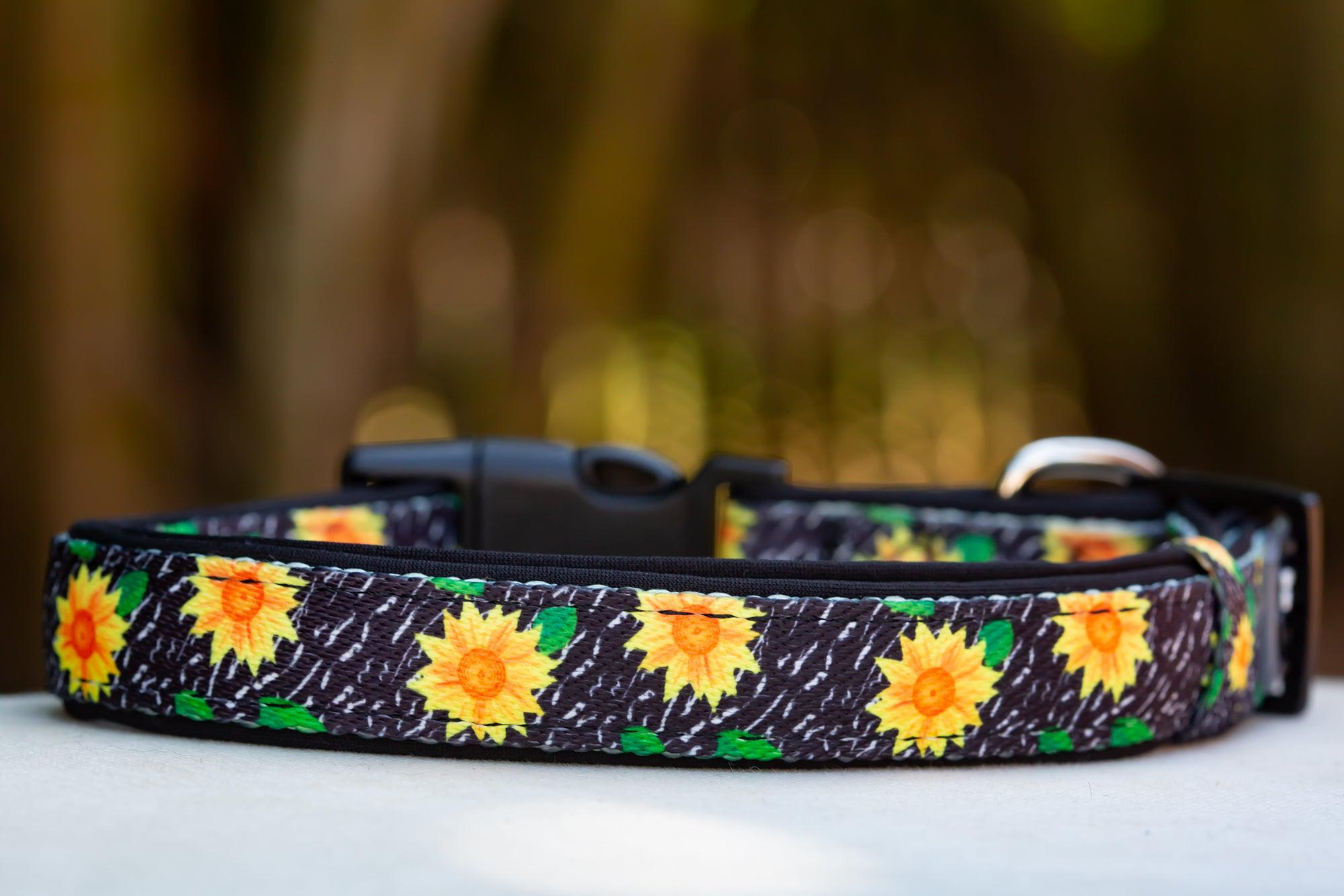 Sunflowers Dog Collar (Neoprene)-Dizzy Dog Collars-Dizzy Dog Collars