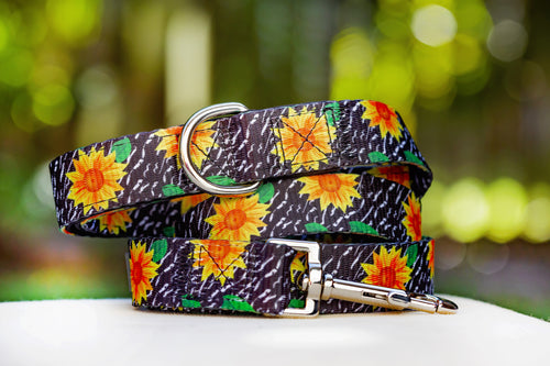 Sunflowers Dog Leash