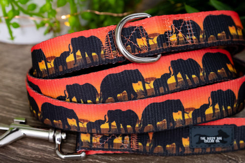 Sunset Elephants Dog Leash (Premade)