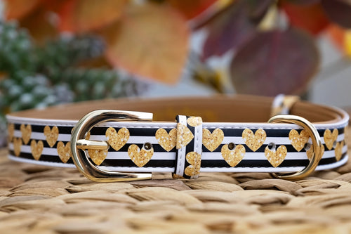 The Cupid: Gold, Vegan Leather Dog Collar