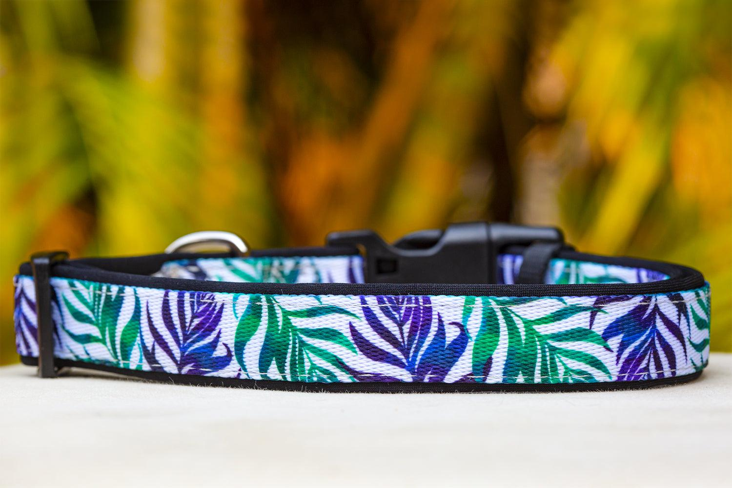 Monstera Leaf Dog Collar (Premade)-Dog Collar-Dizzy Dog Collars