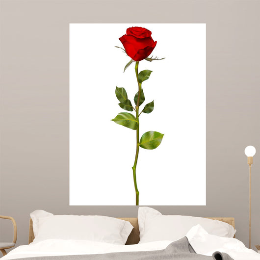 Red Rose White Eps Wall Decal