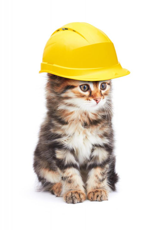 Construction Worker Kitty Cat Wall Decal  U2013 Wallmonkeys Com