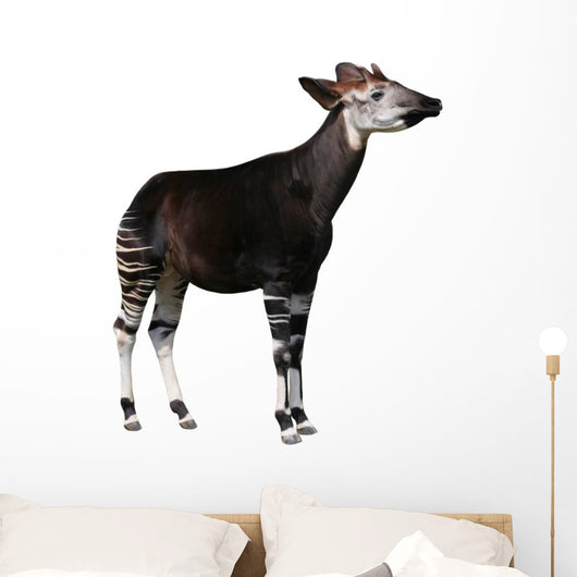 Okapi Wall Decal