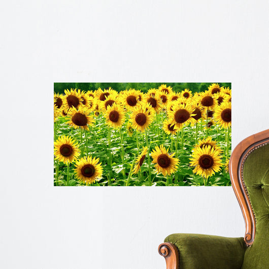 Sunflowers Wall Decal