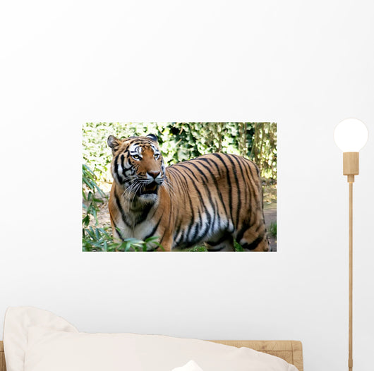 Tiger Spotted Thicket Wall Decal