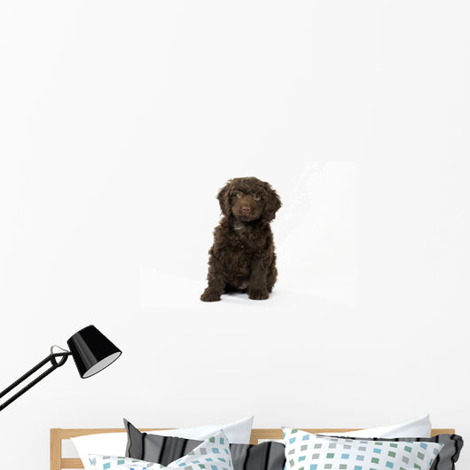 Sproodle Puppy Dog Wall Decal