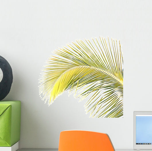 Palme Wall Decal