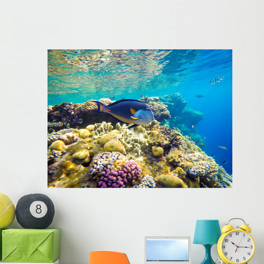 Underwater World Red Sea Wall Decal