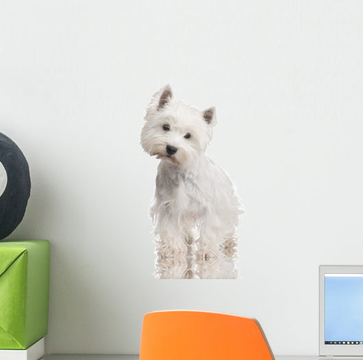 West Highland White Terrier Wall Decal