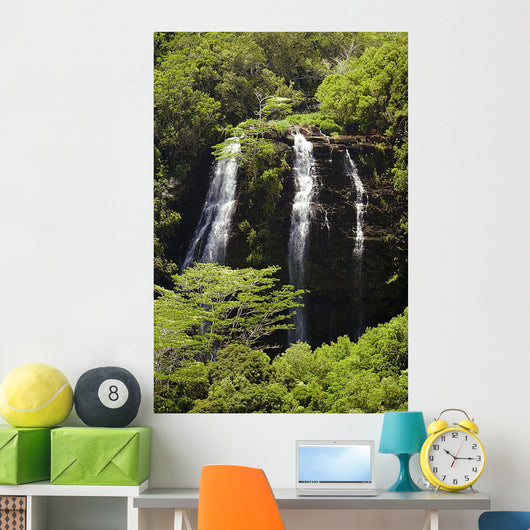 Kauai Waterfall Wall Mural