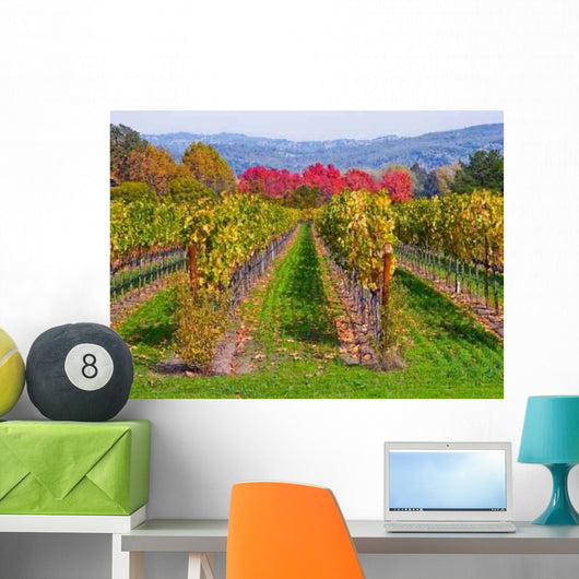 Vineyard Autumn Wall Decal