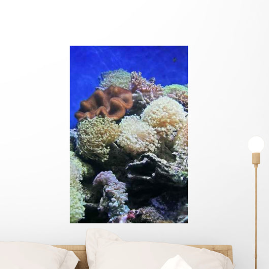 Coral Wall Decal