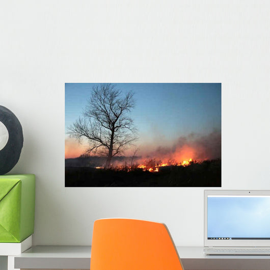 Night Fire Wall Decal