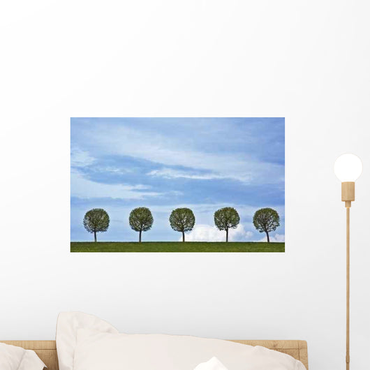 5 Trees Wall Decal