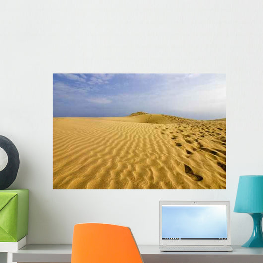Tracks Sand Wall Decal Design 2