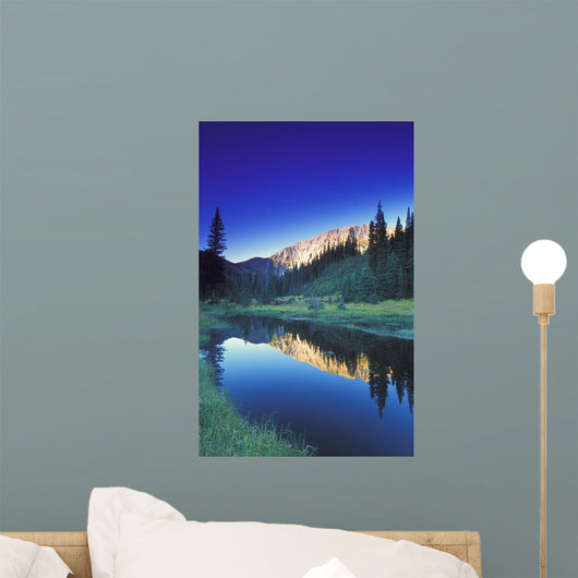 Small Calm Mountain Creek, Kootenays, British Columbia, Canada Wall Mural