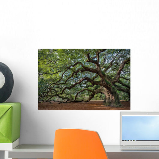 Large Southern Live Oak Wall Decal