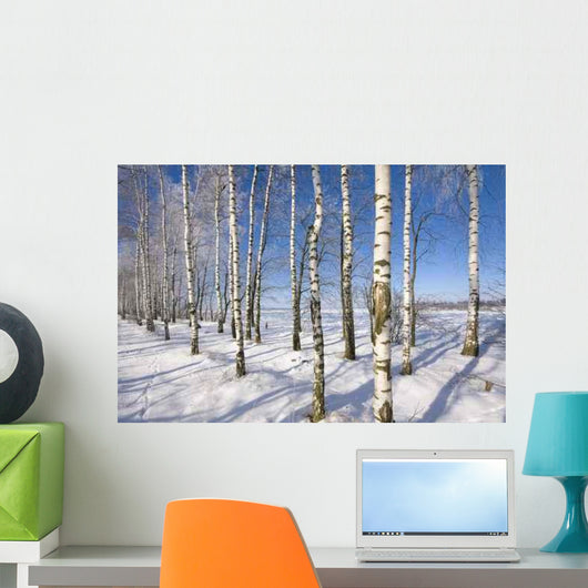 Frozen Birch Alley Winter Wall Decal Design 1