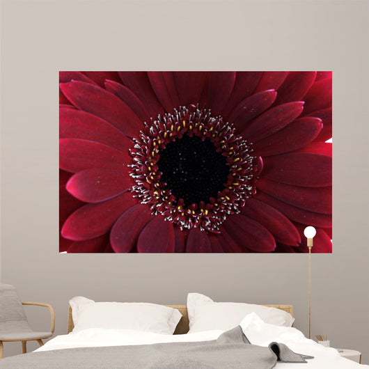 Red Flower Wall Mural