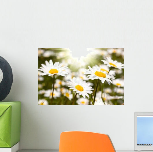 Chamomile Field Wall Decal