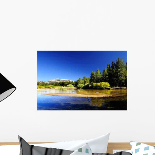 Tuolumne Meadows Lake Wall Decal
