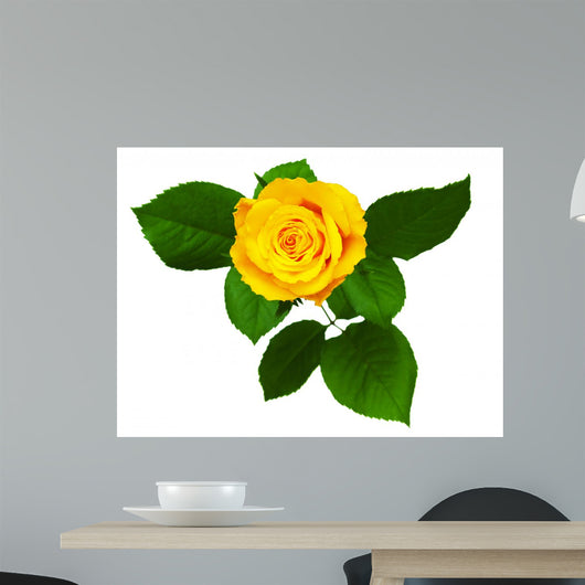 Yellow Rose White Wall Decal