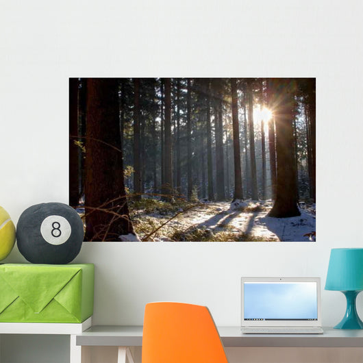 Forest Wall Decal Design 1