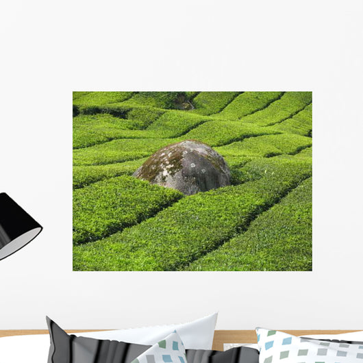 Tea Plantation Cameron Highlands Wall Decal Design 2